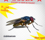 Insecticid muste Sojet