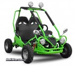 ATV Suisede 450W 36V Eco Buggy New Model