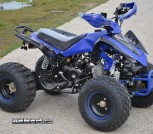 ATV 125cc 8 Disc (2)