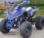 ATV 125cc 8 Disc (6)