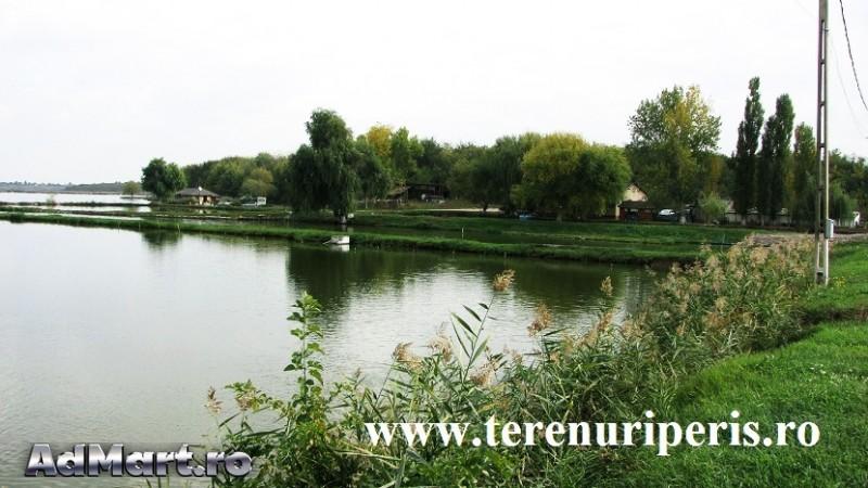 Vand Teren Peris If 6900 Padurea Scrovistea Terenuri De